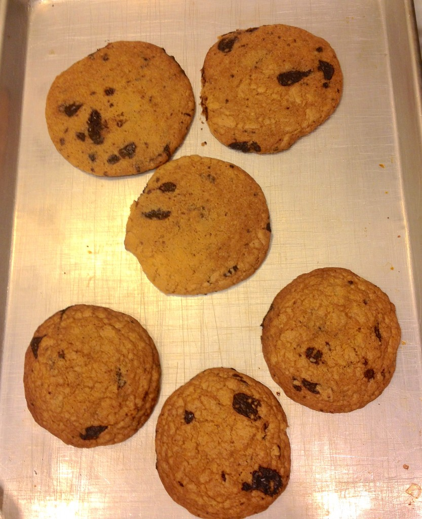 Chocolate Chip Cookie Tested