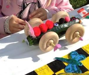 Zucchini Derby Car